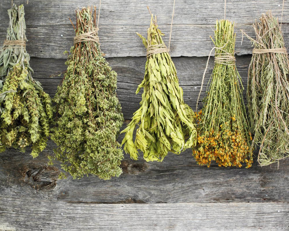Βότανα και Αρωματικά φυτά Ηπείρου